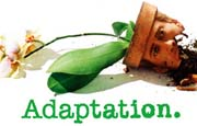 Adapation